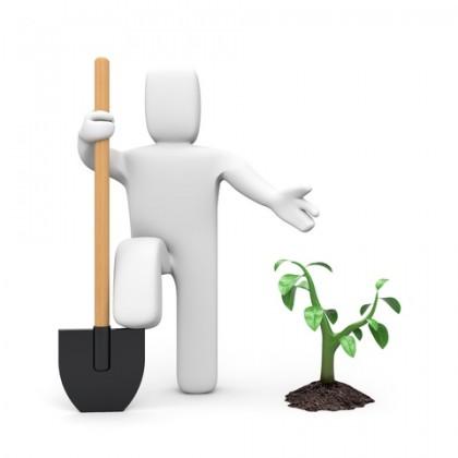 מחפשים סגן מנהל לחברת גינון ועבודות נוספות באיזור באר שבע – אשדוד – אשקלון